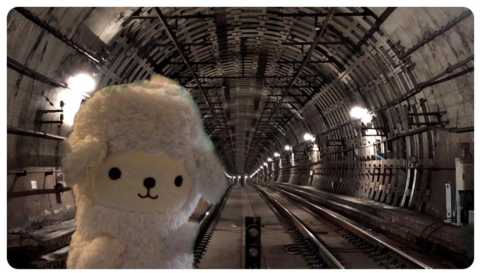 東京メトロのバーチャル背景の地下鉄線路内の画像をzoomのバーチャル背景に設定してみた