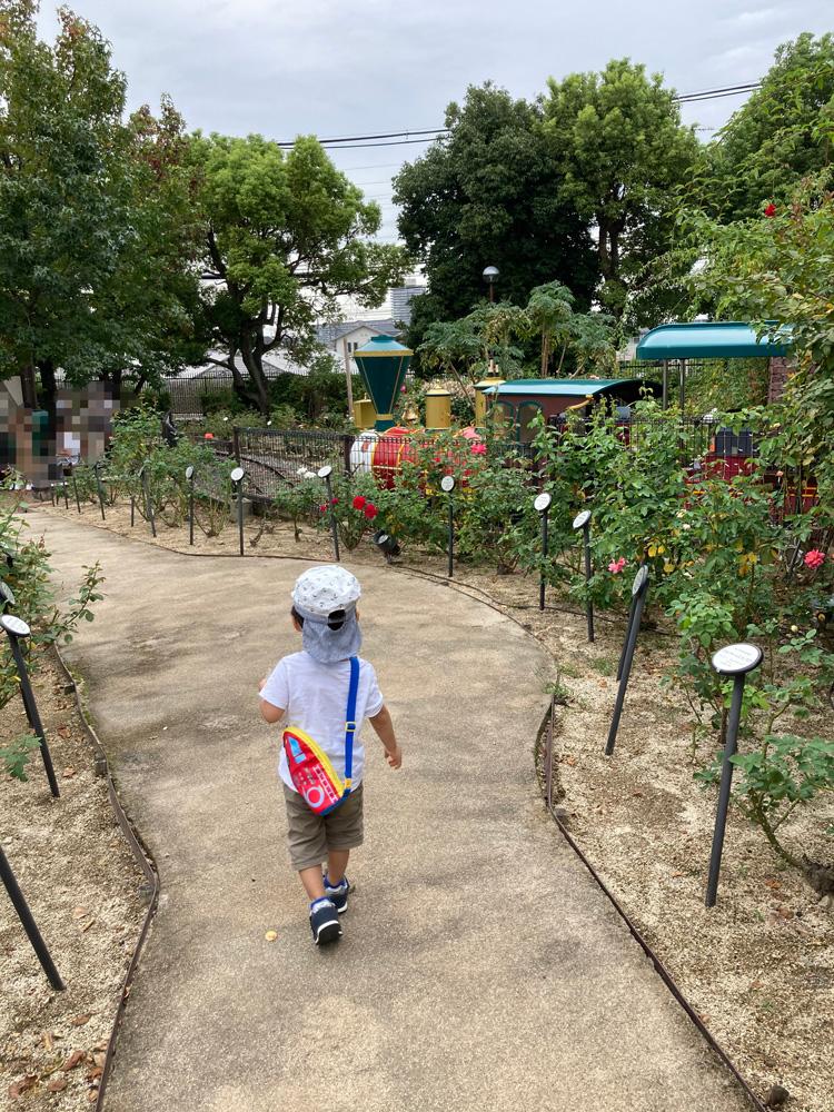 ひらかたパークの子ども汽車 豆汽車「ノームトレイン」をローズガーデンから望む